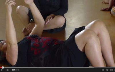 Exploring Shimmy Movements in Constructive Rest